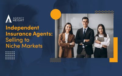 Why Should Independent Insurance Agents Look for Niche Markets to Sell Better?