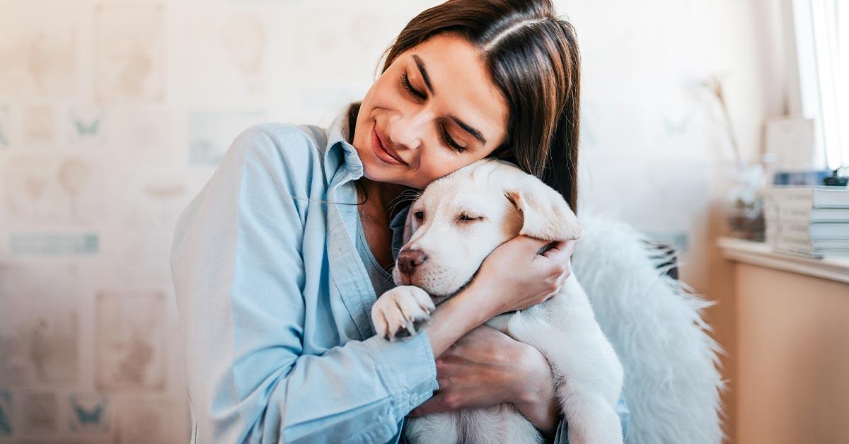 Why-do-i-need-pet-insurance